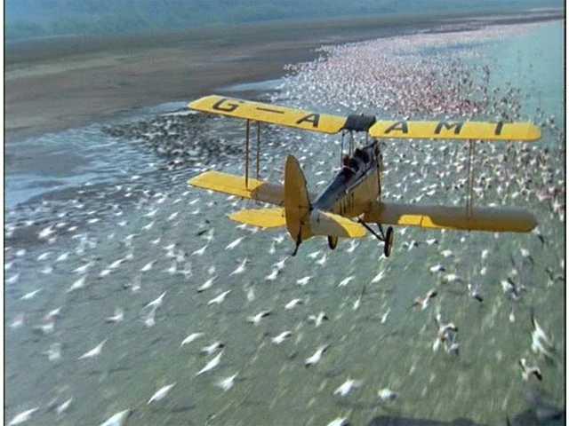 outofafrica plane scene