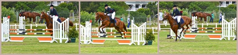 Horse emma jumping 2